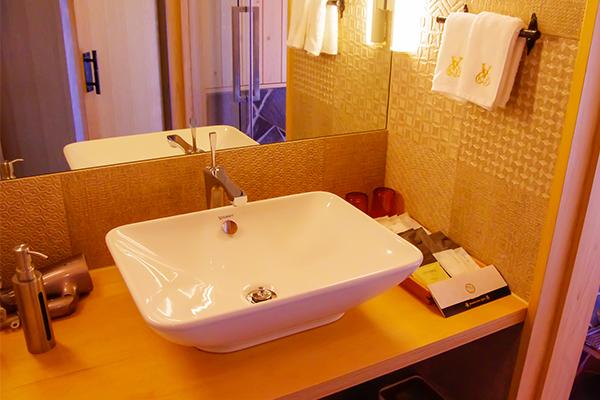 清潔な洗面台とアメニティ